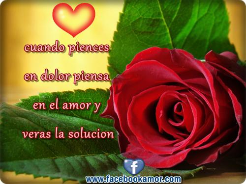 Imágenes con rosas y pensamientos