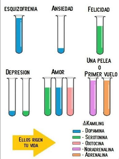 compuestos quimicos del amor