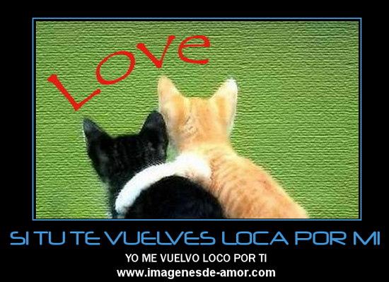 Loco Por ti mi Amor Vuelvo Loco Por ti Imagen