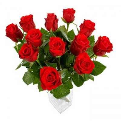 rosas para enamorar una persona 3
