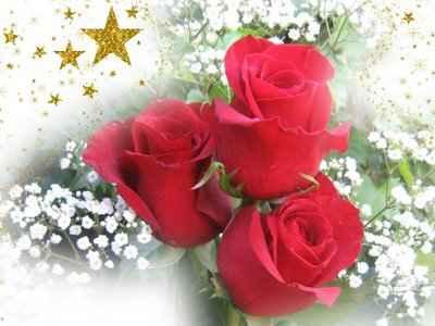 rosas para enamorar una persona 5